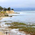 ECOLE MAHALO SURF SAINT GILLES CROIX DE VIE - VENDEE ATLANTIQUE - paysage_trip_californie-compressor